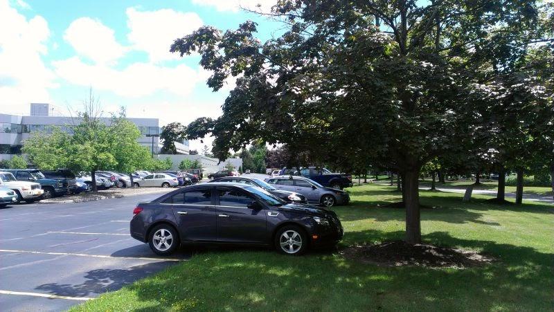 Đỗ xe hơi nơi bóng râm